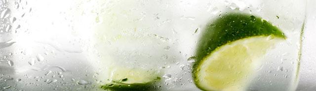 blog_gin_tonic