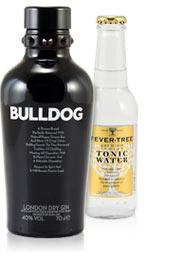 blog_gin_tonic_bulldog
